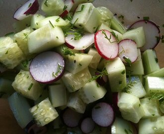 Raw Cucumber And Radish Salad With Lemon Dill Dressing