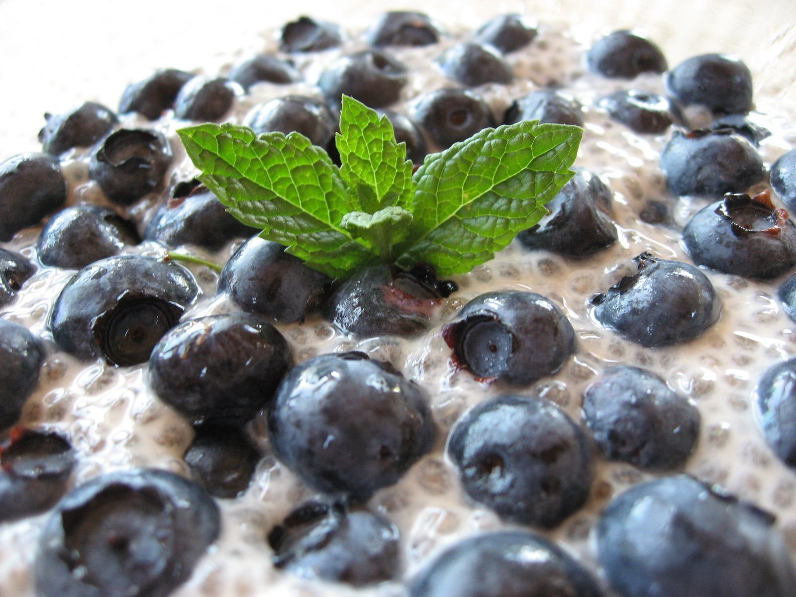 Vegan Vanilla Chia Seed Pudding with Hemp Milk and Blueberries - High in Omega 3 and Antioxidants