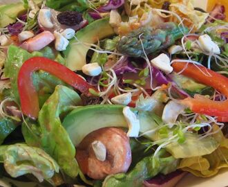"Building a Colorful Meal—Bernadette's ""Everything In The Garden Dinner Salad"""