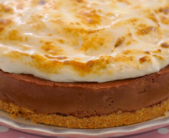 S'more Cheesecake (No-Bake Recipe)