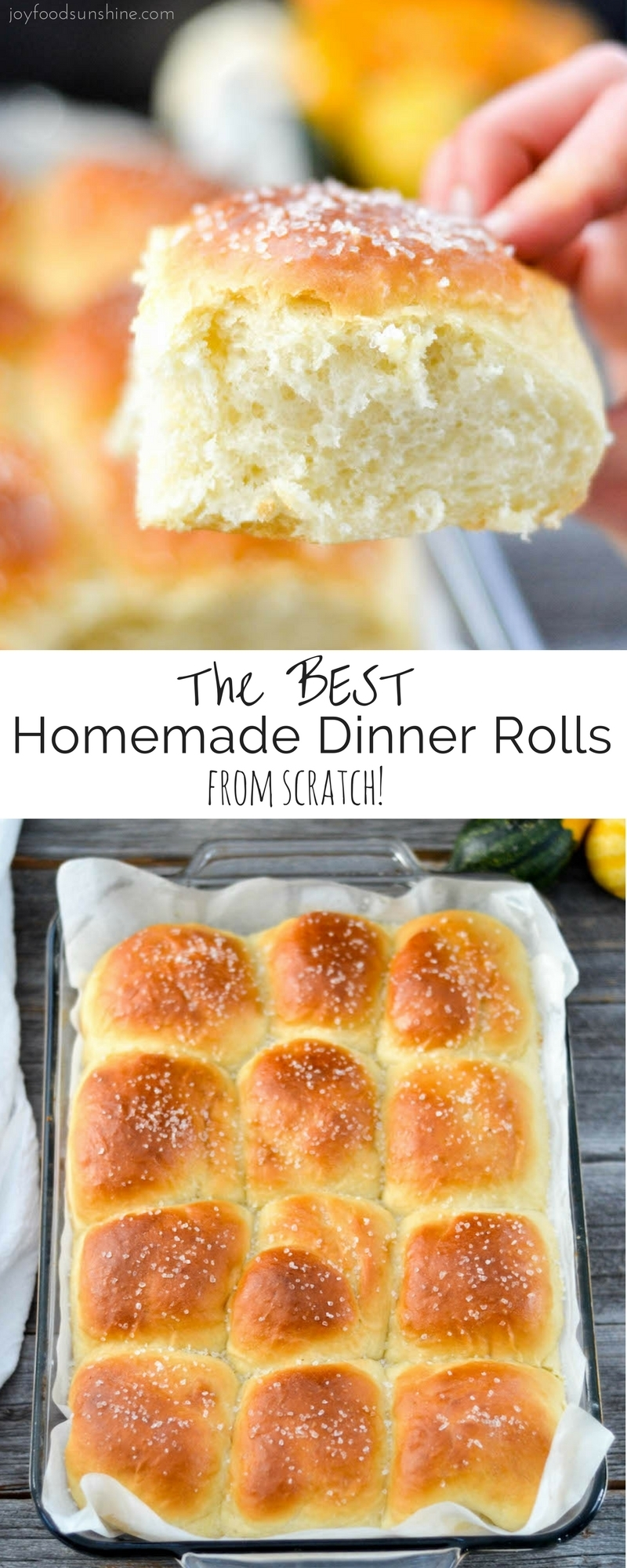The Best Homemade Dinner Rolls recipe