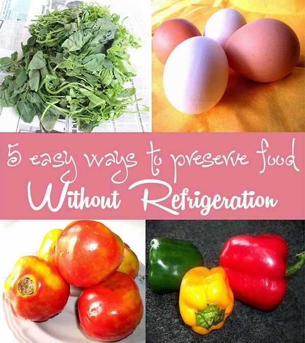 5 easy ways to preserve food without refrigeration