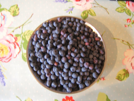 Blueberries overflow!