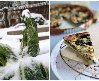 Hartige warmoes & feta quiche