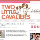twolittlecavaliers.com