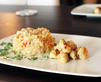 Kuharisotto ja kampasimpukat | Pikeperch risotto with scallops