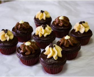Double Chocolate Vanilla Bean & Chocolate Malt Frosted Mini Cupcakes
