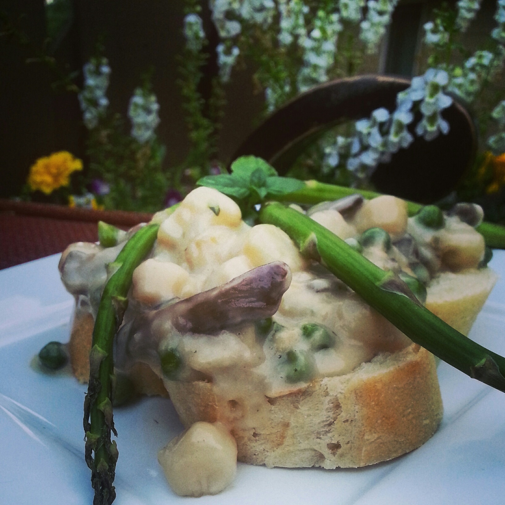 Puttin' Lipstick on the Mollusk| Bay Scallop Bread Pudding with Spring Peas and Mushrooms