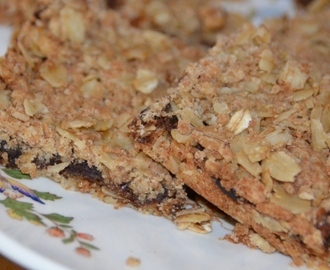 Oat And Date Slices