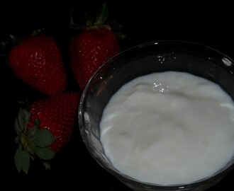 ... YOGURT MAGRO HOME MADE ...