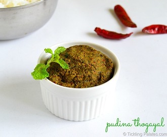 Pudina Thogayal Recipe | Mint Thogayal