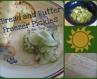 Bread and Butter Freezer Pickles