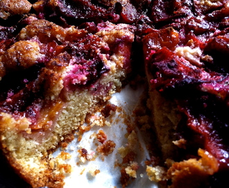Plum and Cinnamon Cake