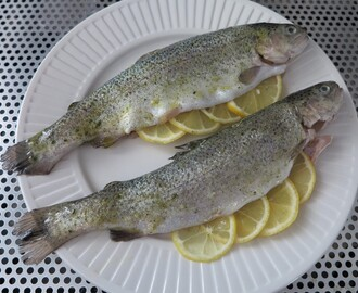 Verse forel van de barbecue