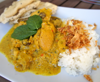 Elins chicken korma