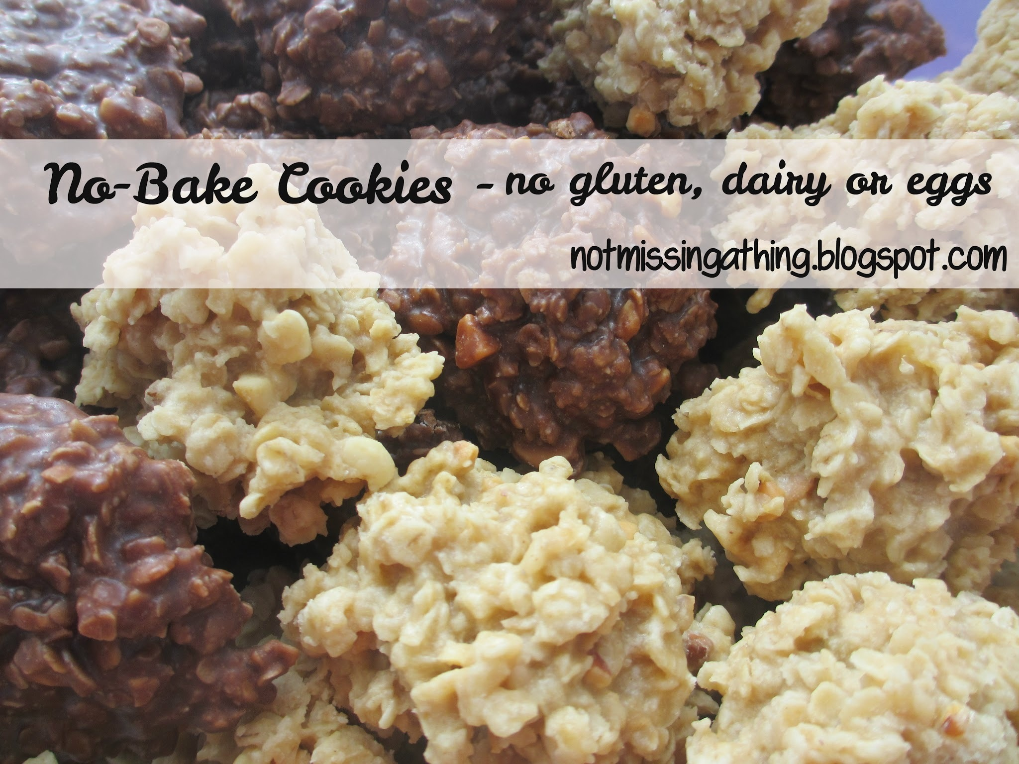 No-Bake Chocolate Peanut Butter Cookies {gluten, dairy, egg-free}
