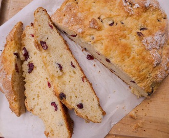 Cranberry (Chocolate?) Irish Soda Bread