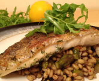 Grilled Hake with Pearl Barley Risotto