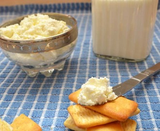 How to make mozzarella and armenian string cheese at home