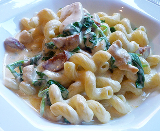 * Cavatappi with Four Cheese Sauce, Chicken and Chorizo