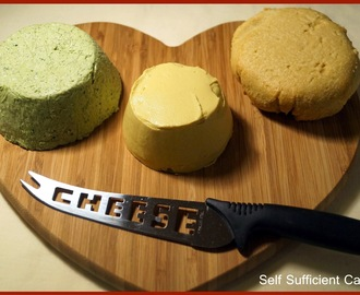 Suma Bloggers Network - Homemade Vegan Cheese x 3