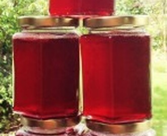 Plum Jelly – preserving summer