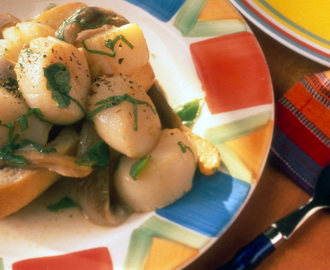 Oyster Mushroom Scallops with Herbs