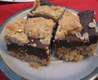 Starbucks Oat and Fudge Bars