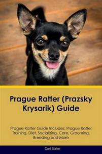 Prague Ratter (Prazsky Krysarik) Guide Prague Ratter Guide Includes