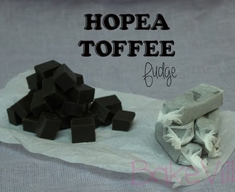 Hopeatoffee Fudge