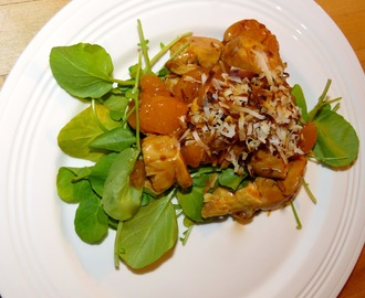 My Newlywed Cooking Adventures' Mandarin Orange Teriyaki Chicken Salad