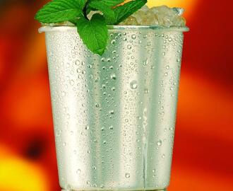 5 Must Try Mint Julep Recipes