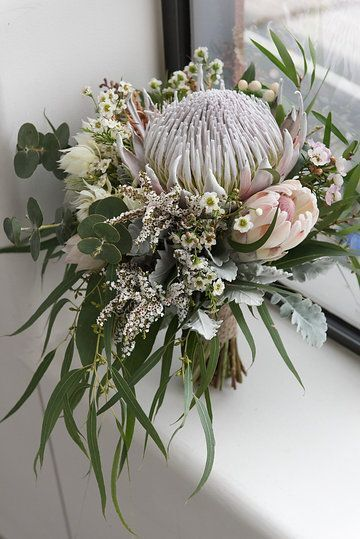 Bild: Native bridal bouquet. King protea, gum foliage, silver suede ...
