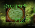 WHAT Is Swamp Pie???