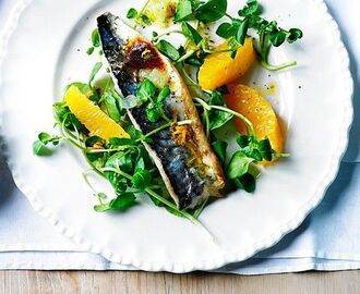 Grilled mackerel fillets with lime mojo | Recipe | Mackerel recipes, Grilled mackerel, Mackerel fillet recipes