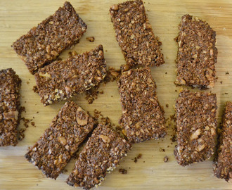 Salty, Chocolatey, Nutty, Protein-y Granola Bars