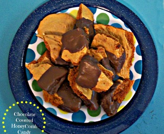 Chocolate Dipped HoneyComb Candy (Hokey Pokey)