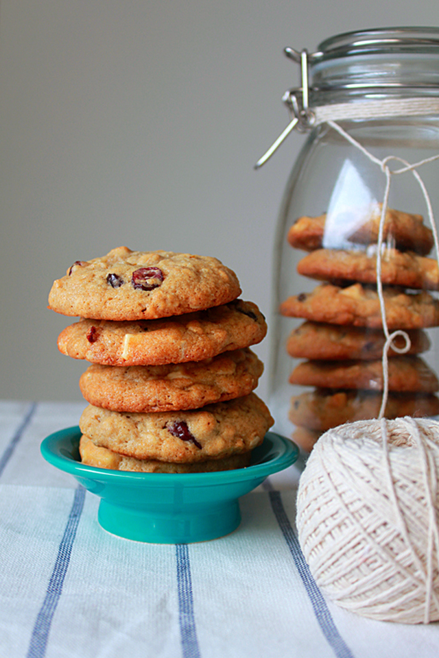 Dried Cranberry White Chocolate Spice Cookie