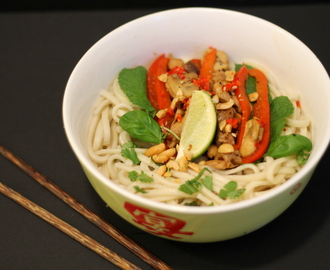 Vietnamese Noodle Salad with Hoi Sin Chicken