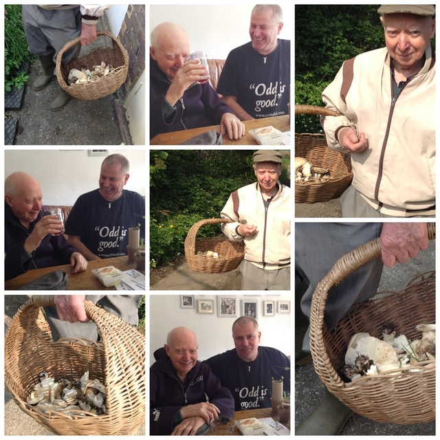 Foraging for St Georges Day Mushrooms with Johnny