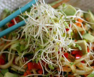Asian Zoodle Bowl with Miso Tahini Dressing