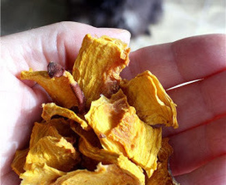 How to Make Dried Pumpkin Dog Treats