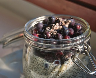 RAW Coconut Blueberry Chia Pudding