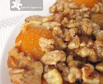 Apricot Cake with Cinnamon Nut Topping