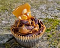Snickers Cupcakes with Peanut Brittle