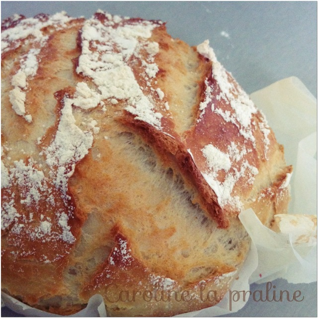 Pain cocotte (thermomix)