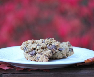 Healthy Chocolate Chip Cookies (with Chickpeas! shhh...!)