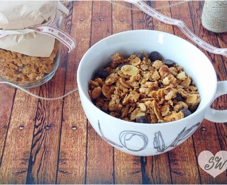 GRANOLA CASERA CON CHIPS DE CHOCOLATE