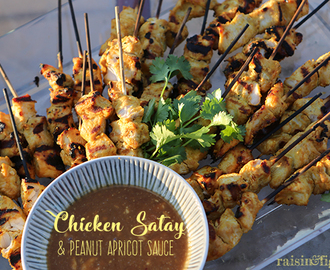 Chicken Satay with Peanut Apricot Sauce