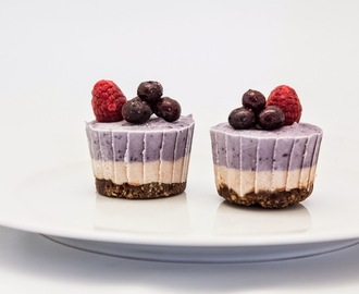 Raw Blueberry Cardamom Cheesecakes